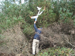 J McFarland rescues his plane