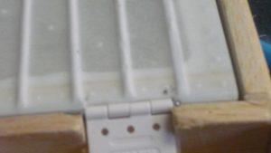 P1030387